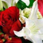 img-flower02